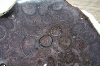 giant oil spot glaze from dug-up clay